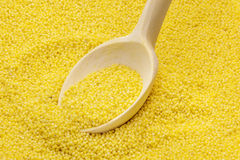 Wooden spoon on millet groats Stock Images