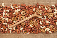 Wooden spoon with  nuts Stock Photography
