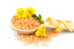 Wooden spoon with orange bath salt Stock Image