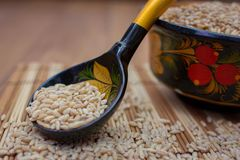 Wooden spoon with pearl barley. The wooden spoon painted under Khokhloma with pearl barley Royalty Free Stock Photos