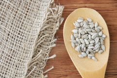 Wooden spoon with peeled sunflower seeds with linen napkin royalty free stock image