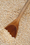 Wooden spoon and quinoa grains Stock Photo