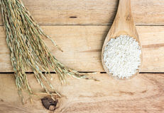 Wooden spoon with rice and paddy pile on wood Stock Image