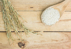 Wooden spoon with rice and paddy pile on wood Stock Images