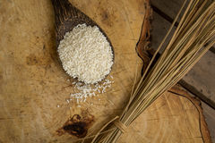Wooden Spoon rice, wood floors, brown, jasmine rice, surface. Stock Photo