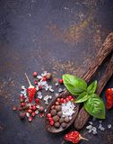 Wooden spoon with salt and pepper. Wooden spoon with salt, pepper and basil. Top  view Stock Image