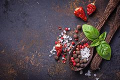 Wooden spoon with salt and pepper. Wooden spoon with salt, pepper and basil. Top  view Royalty Free Stock Image