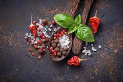 Wooden spoon with salt and pepper. Wooden spoon with salt, pepper and basil. Top  view Stock Photography