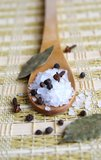 Wooden spoon with sea salt and black pepper. A wooden spoon with coarse sea salt and black pepper on a straw table-bedding, arranged with cloves and bay leaves Stock Photos