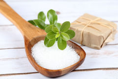 Wooden spoon with sea salt Stock Images