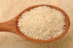Sesame seeds Stock Image