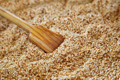Wooden spoon with sesame seeds Royalty Free Stock Photos