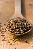 Wooden spoon with spices Royalty Free Stock Images