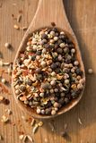 Wooden spoon with spices Stock Photography