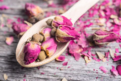Wooden spoon with tea rose buds and petals Royalty Free Stock Photo