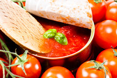 Wooden spoon with tomato salsa and a basil leaf Royalty Free Stock Photo