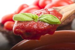 Spoon with tomato sauce and basil Stock Image