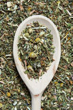 Wooden spoon and various herbs in a herbalist Stock Photos