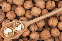 Wooden spoon with  walnuts Royalty Free Stock Images