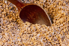 Wooden spoon in wheat Stock Images