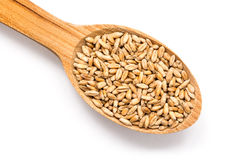 Wooden Spoon With Wheat Seeds Royalty Free Stock Photos