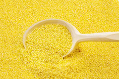 Wooden spoon on yellow millet groats Stock Photography