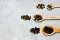 Wooden spoons with different tea leaves on grey concrete backgro Royalty Free Stock Photo