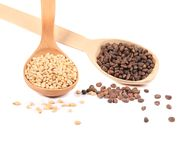 Wooden spoons full with pine nuts. Royalty Free Stock Images