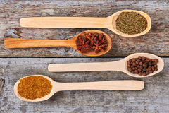 Wooden spoons with seasoning. Stock Photos
