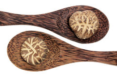 Wooden Spoons with Shitake Mushroom Stock Photo