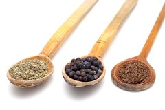 Wooden spoons with spices Royalty Free Stock Images
