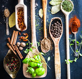 Wooden spoons with spices and herbs Royalty Free Stock Image