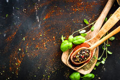 Wooden spoons with spices and herbs Stock Photography