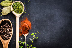 Wooden spoons with spices and herbs Stock Images