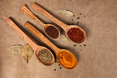 Wooden spoons with spices. Wooden spoon with spices on brown backgrownd Stock Photo