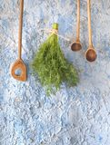 Wooden spoons w. dill herbs Royalty Free Stock Image