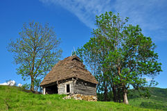 Wooden stable with thatched roof Royalty Free Stock Image