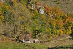 Wooden stable with thatched roof in the mountains Royalty Free Stock Photo