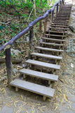 Wooden Stair in the Forest Trail Royalty Free Stock Image