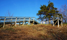 Wooden Staircase. An outdoor wooden staircase leading into a park Royalty Free Stock Images