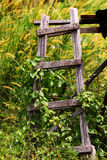 Wooden staircase. In the backyard Stock Photo