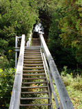 Wooden Staircase. A wooden staircase leading upwards Stock Images