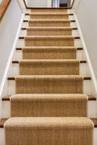 Wooden staircase with carpet runner. And white molding Royalty Free Stock Photography