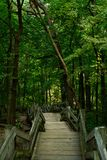 Staircase to the trails. Stock Photography