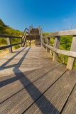 Wooden staircase going into blue sky among dunes and high grass Royalty Free Stock Photography