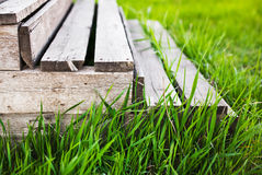 Wooden staircase in grass Royalty Free Stock Photos