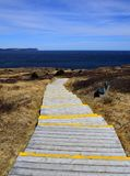 Wooden stair case leading towards the ocean Stock Image