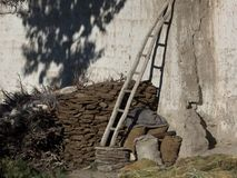 A wooden staircase leaning against a white clay wall, the back of the wall is firewood, on the wall there is a shadow from a tree, Stock Photos