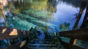 Wooden staircase steps going down to the crystal clear turquoise water of Ginnie Springs, Florida. In Santa Fe river royalty free stock photos