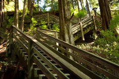 Wooden staircase zig-zagging up hill Stock Image